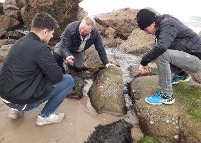 Biology Revision on the local beach